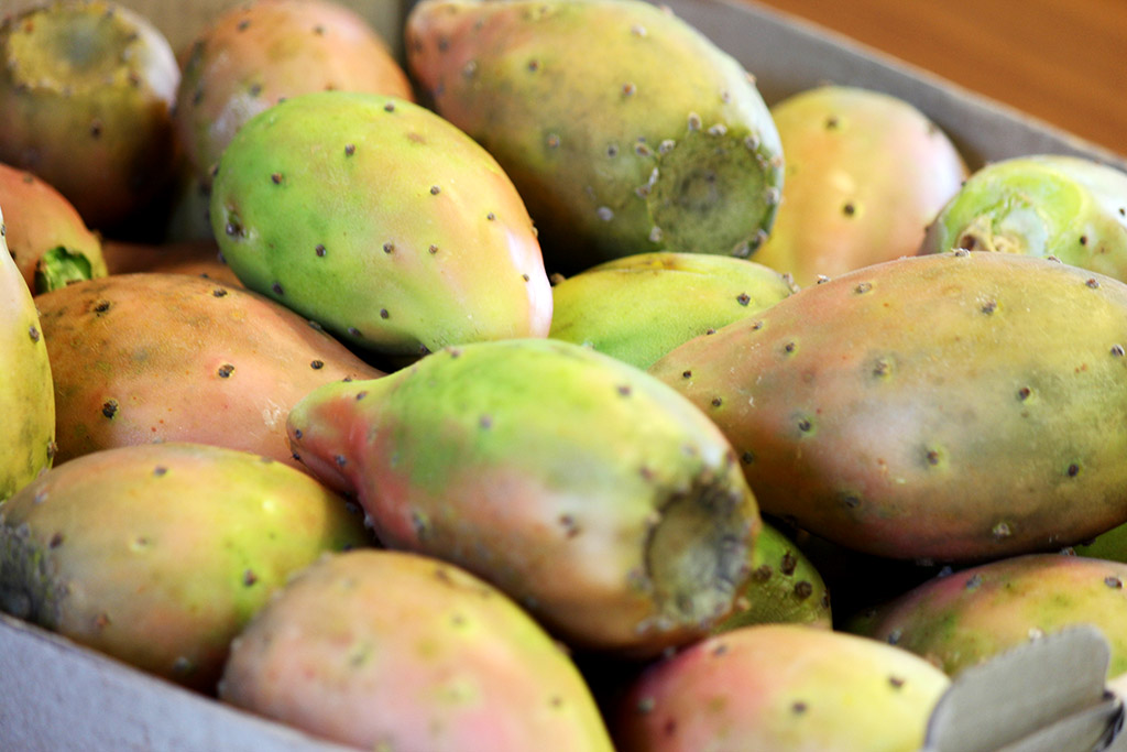 Suco de figo-da-índia | Um fruto delicioso