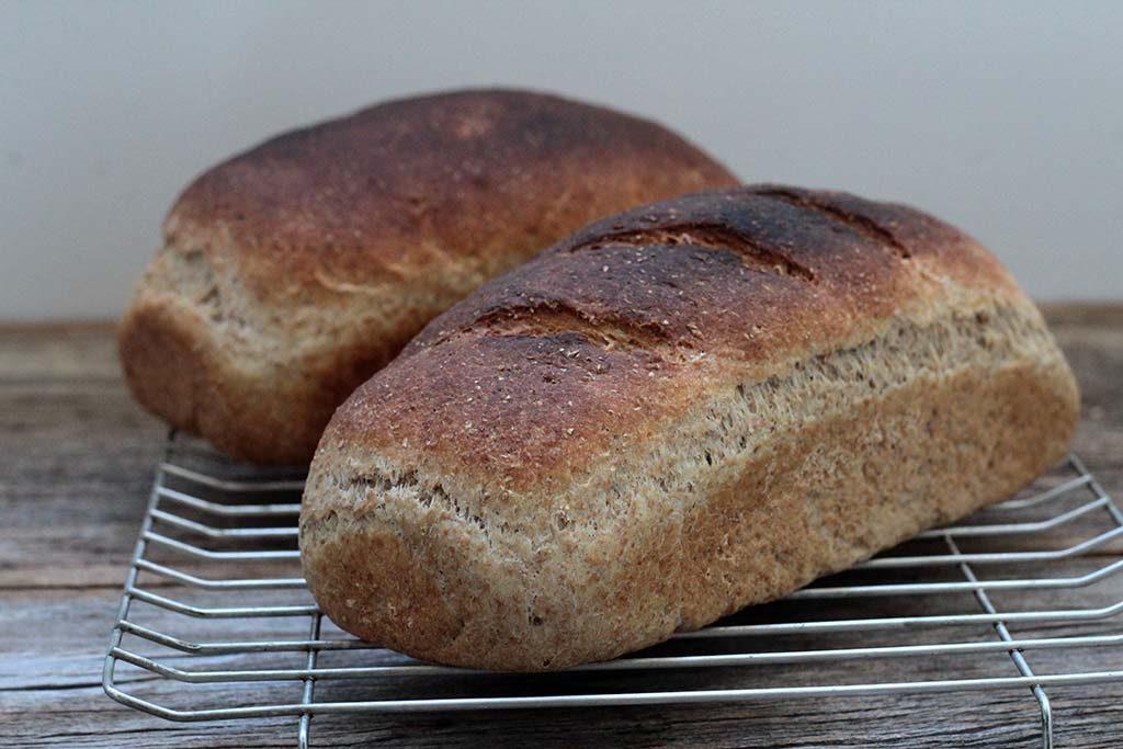Pão de aveia e farinha integral