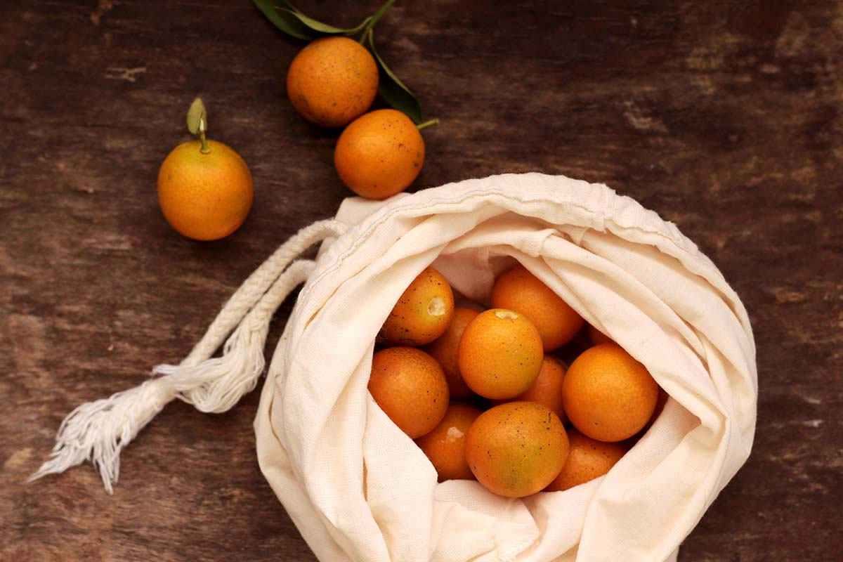laranjinha kinkan ou kumquat